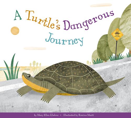 A Turtle's Dangerous Journey