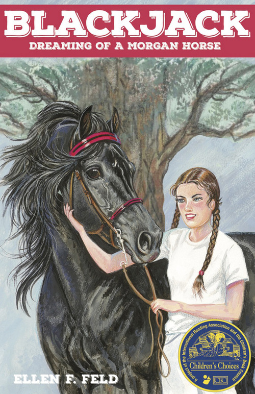 Blackjack: Dreaming of a Morgan Horse