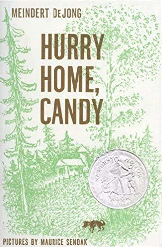 Hurry Home, Candy (Harper Trophy Books)