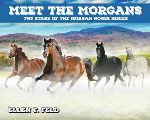 Meet The Morgans: The Stars of the Morgan Horse Series