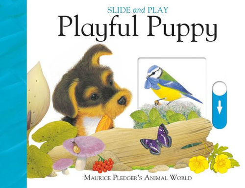 Slide and Play: Playful Puppy