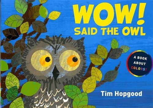 Wow! Said the Owl: A Book About Colors