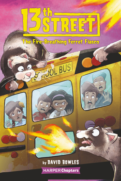 The Fire-Breathing Ferret Fiasco book