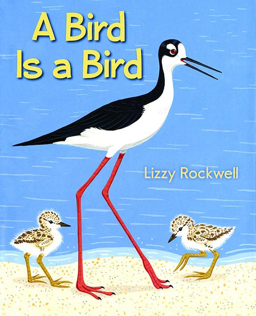 A Bird Is a Bird book
