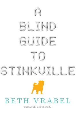 A Blind Guide to Stinkville book