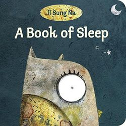 A Book of Sleep book