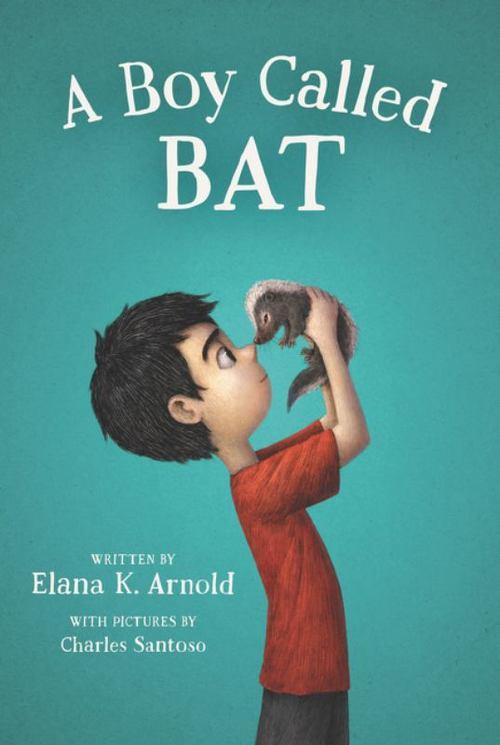 A Boy Called Bat Book