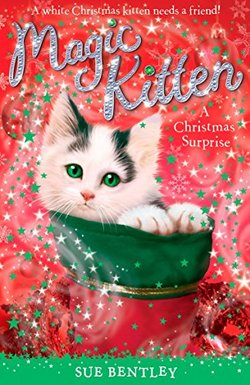 A Christmas Surprise book