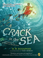 A Crack in the Sea book