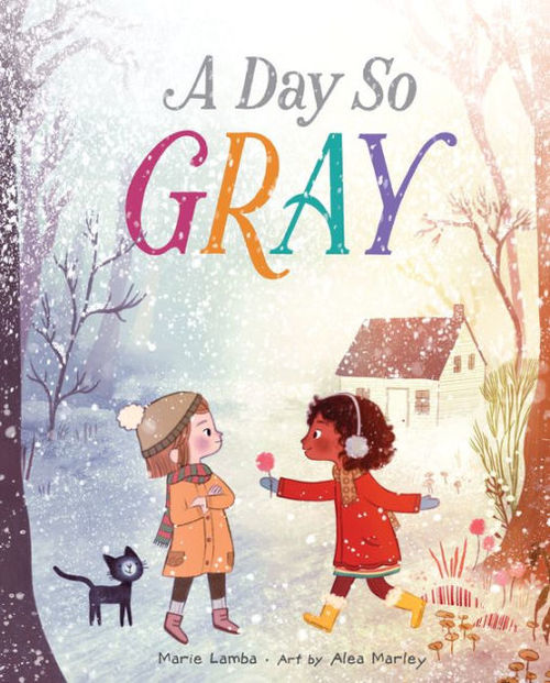 A Day So Gray book