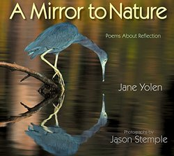 A Mirror to Nature book