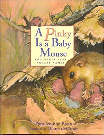 A Pinky is a Baby Mouse: And Other Baby Animal Names book
