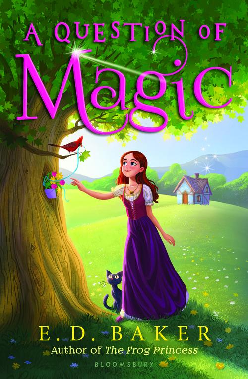 A Question of Magic book