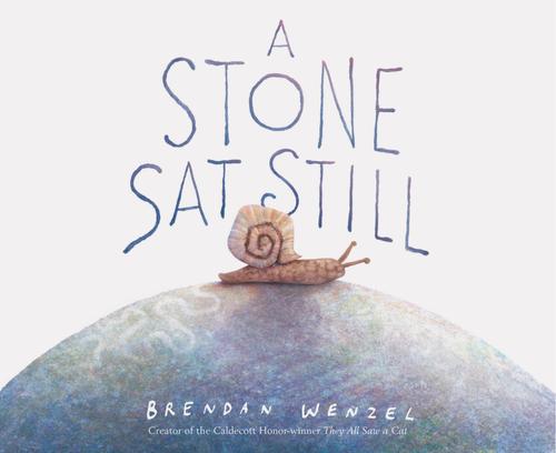 A Stone Sat Still book