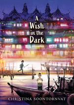 A Wish in the Dark book