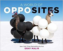 A World of Opposites book