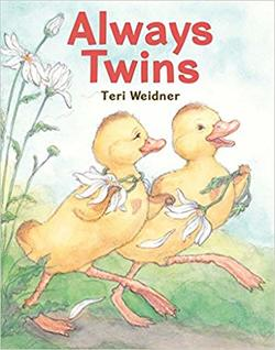 Always Twins book
