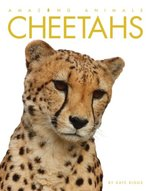 Amazing Animals: Cheetahs book