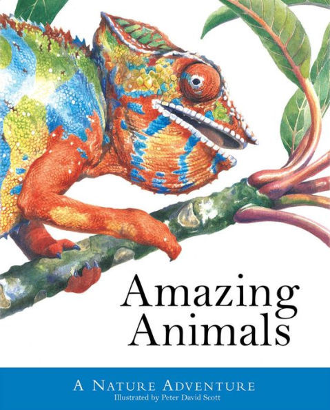 Amazing Animals book