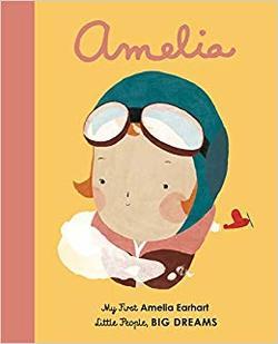 Amelia Earhart book