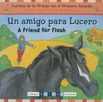 Amigo Para Lucero/A Friend For Flash book