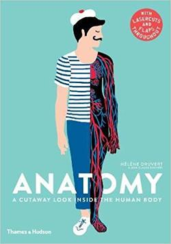 Anatomy: A Cutaway Look Inside the Human Body Book