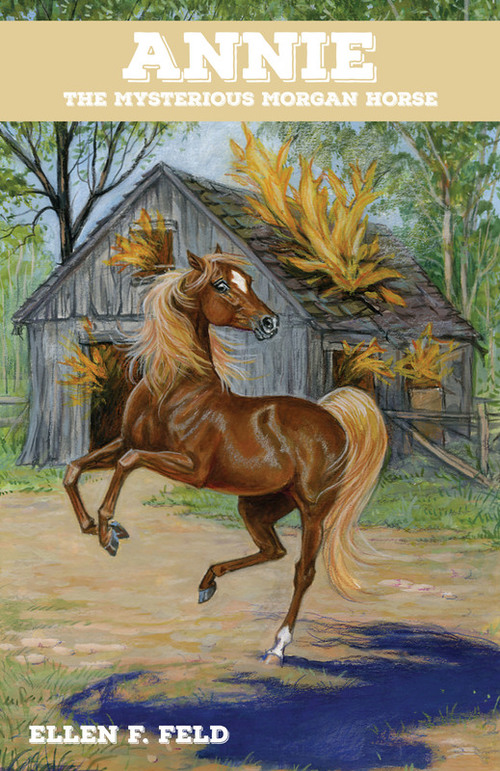 Annie: The Mysterious Morgan Horse book