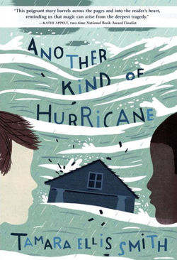 Another Kind of Hurricane book