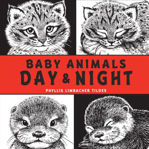 Baby Animals Day and Night book