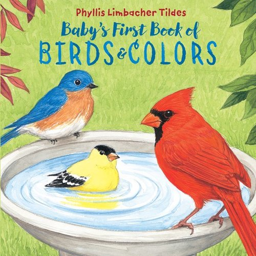 Baby's Birds and Colors book