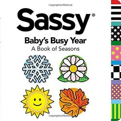 Baby's Busy Year book