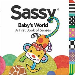 Baby's World: A First Book of Senses  Book