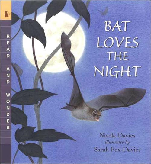 Bat Loves the Night Book