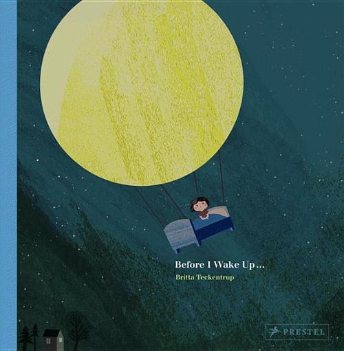 Before I Wake Up book