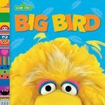 Big Bird book