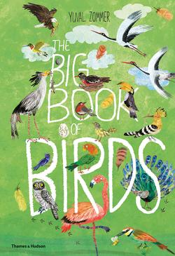 Big Book of Birds book