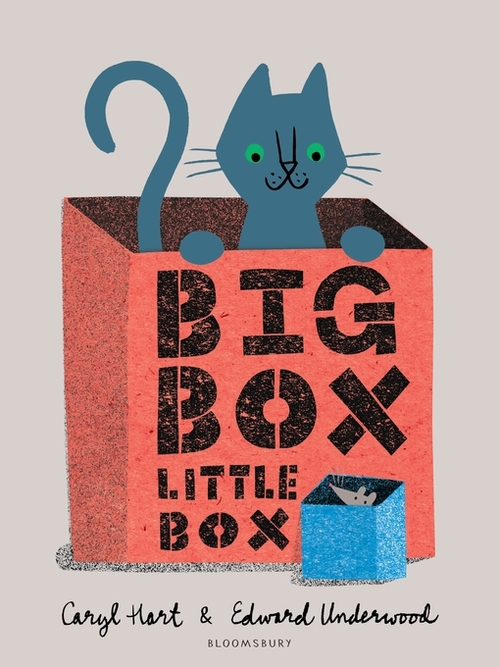 Big Box Little Box book
