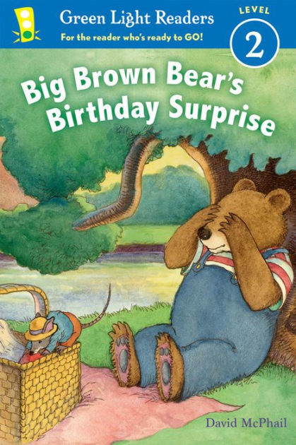 Big Brown Bear's Birthday Surprise book