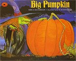 Big Pumpkin book