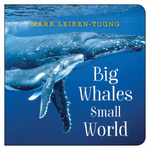Big Whales, Small World book
