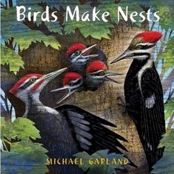 Birds Make Nests Book