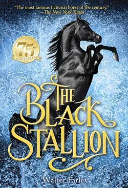 Black Stallion book