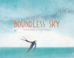 Boundless Sky book