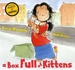 Box Full of Kittens book