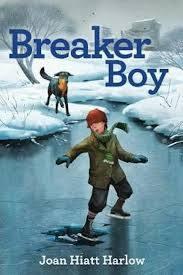 Breaker Boy book