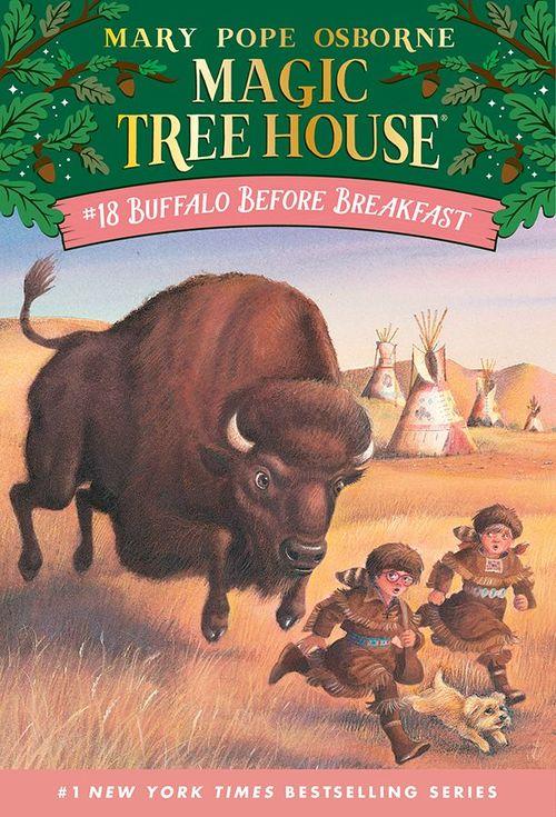 Buffalo Before Breakfast book
