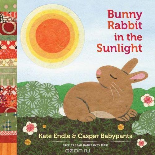 Bunny Rabbit in the Sunlight book