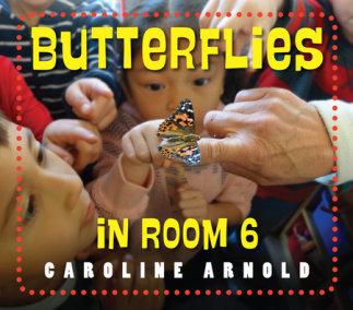 Butterflies in Room 6 book