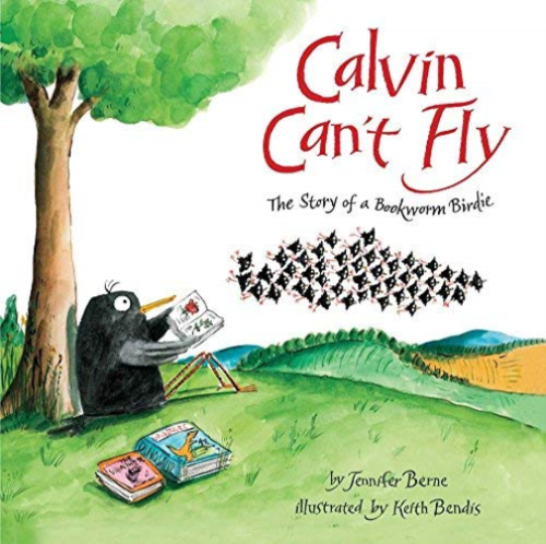 Calvin Can't Fly book