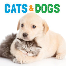 Cats and Dogs book